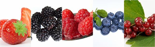 Efectos de quemadores de grasa antioxidantes