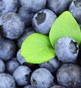 ¿Cuáles son las frutas para bajar de peso naturalmente?